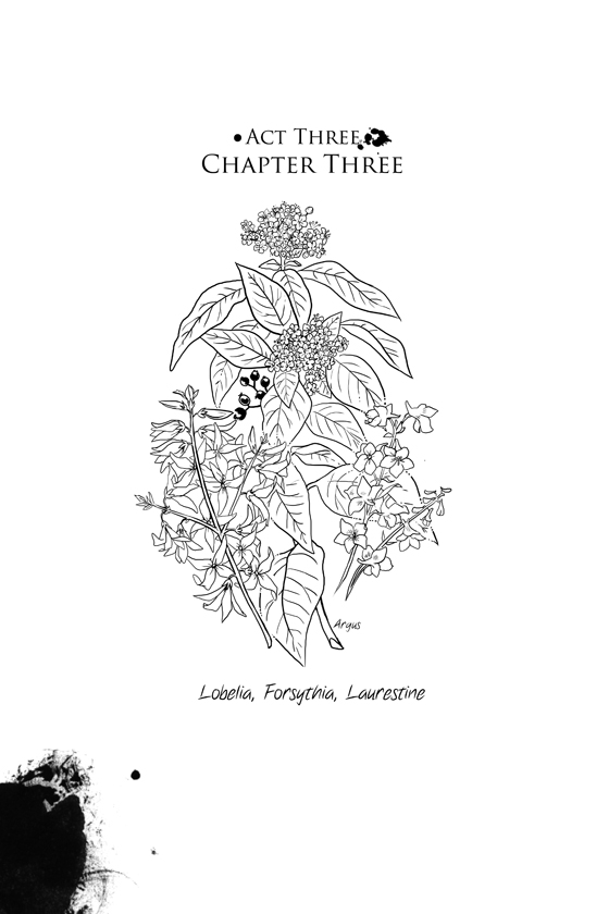 Act Three, Chapter Three: 01
